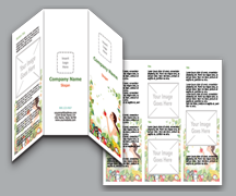 Salon Brochures