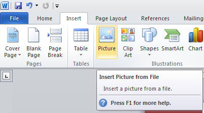 inserting images in MS Word